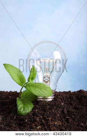 concept about renew energy - lamp bulb on, in soil
