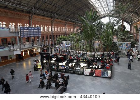 Atocha Railway Station Interior In Madrid, Spain