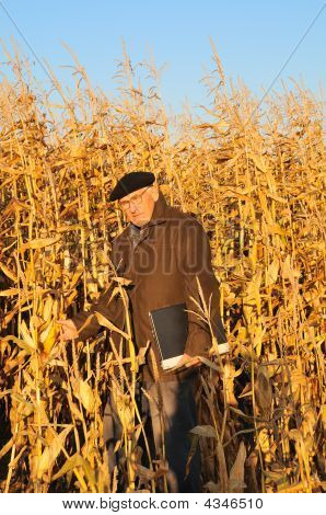 Grandfather In Field