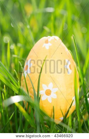 Orange easter egg nestled in the grass in the sunshine