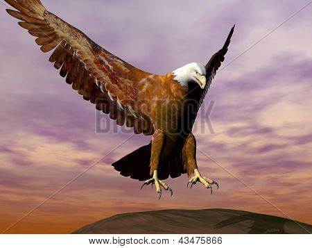 Eagle Landing - 3D Render
