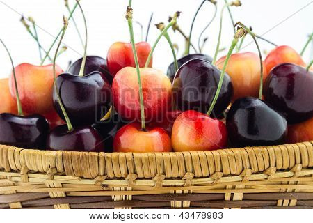 Rainier And Black Cherries Mixed In A Wooden Basket