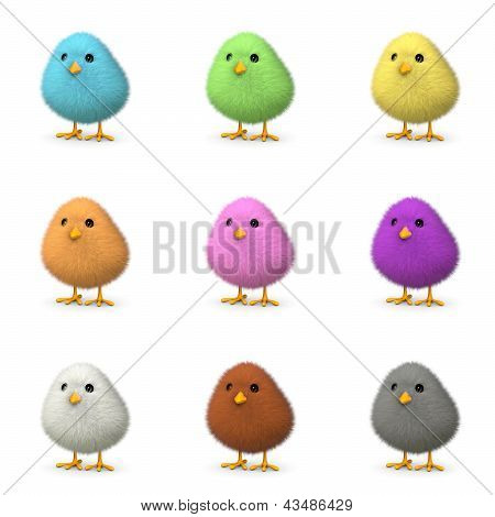 Fluffy Colorful Chicks