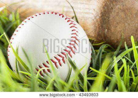 New White Baseball In Green Grass