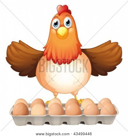 Illustration of a dozen of eggs and the mother hen on a white background