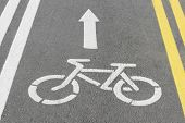 stock photo of bike path  - asphalt bike lane road for bicycles with sign - JPG