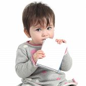 picture of love bite  - Baby holding and biting a blank notebook on a white isolated background - JPG