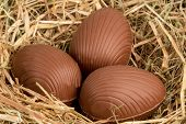 Three chocolate easter eggs in straw
