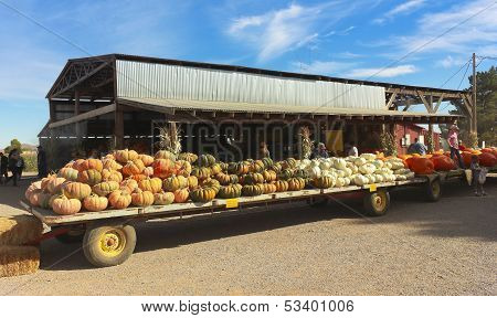 An Apple Annie's Flat Bed Full Of Pumpkins