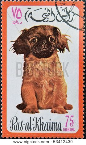 RAS AL-KHAIMAH - CIRCA 1971: A stamp printed in Ras al-Khaimah shows a dog circa 1971