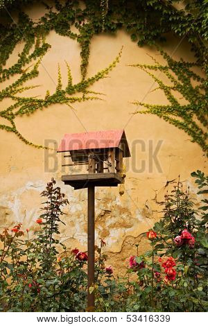 Bird house in garden