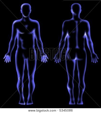 Human Anatomy X-ray Vision