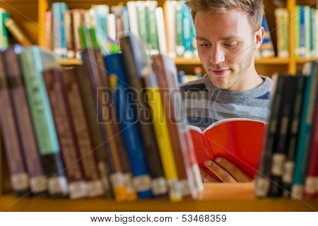 Young male student reading a book amid bookshelves in the college library