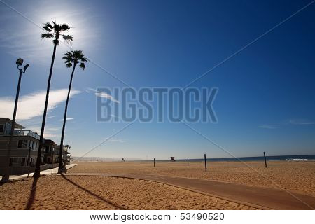 California Newport Beach with high palm trees on sand shore