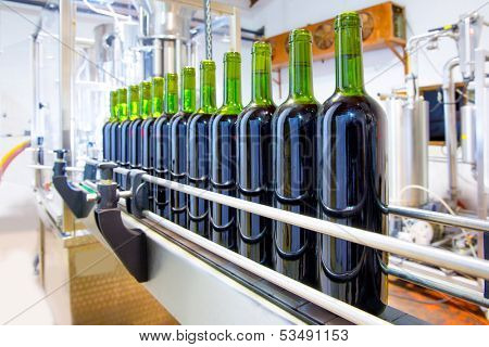 red wine in glass bottling machine at winery