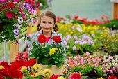 Gardening, planting - Lovely girl holding flowers in garden center.