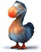 picture of dodo  - Dodo - JPG