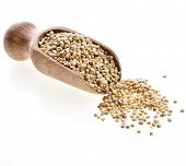 pic of quinoa  - quinoa seed grain  in a wooden bowl scoop close up isolated on a white background - JPG