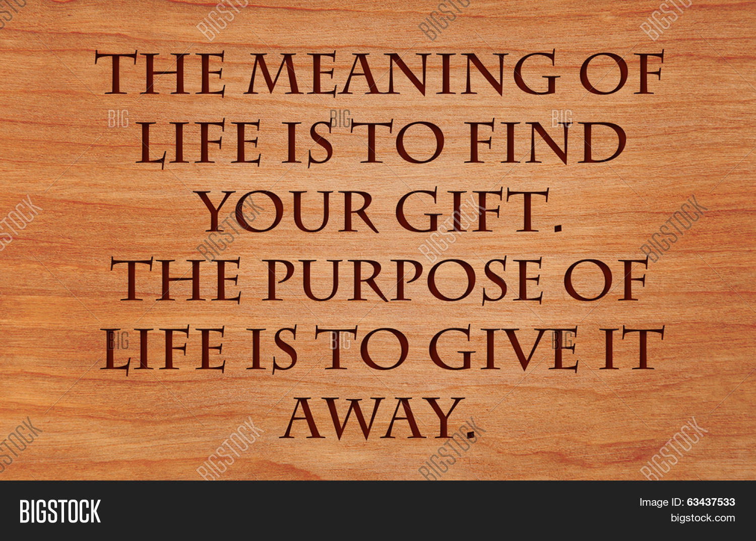 Purpose Of Life Quotes Stunning Meaning Life Find Your Giftimage & Photo  Bigstock