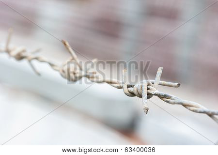 Closeup Barbed Wire Fence ,select Focus.