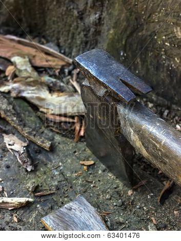 Axe Cut Wood