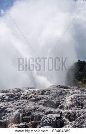 Whakarewarewa Thermal Geyser Area