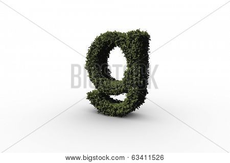 Lower case letter g made of leaves on white background