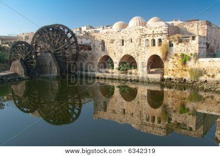 Reflect In Hama