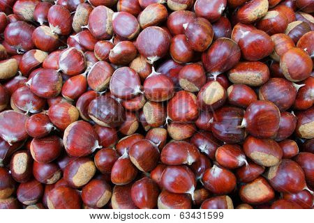 Pile of Chestnuts at the farmers market