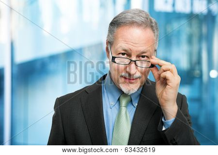 Portrait of a senior businessman