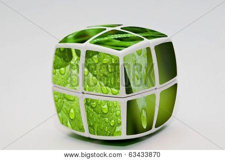 Green Drops Cube