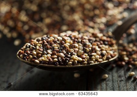Organic Colorful Raw Quinoa