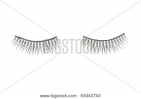 Black Fake Eyelash Isolated