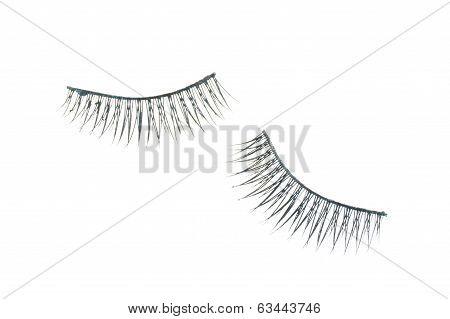 Black Fake Eyelash For Cosmetics Isolated