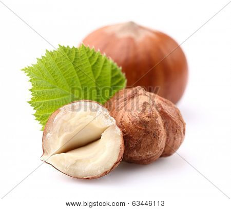 Hazelnuts with leaf  in closeup