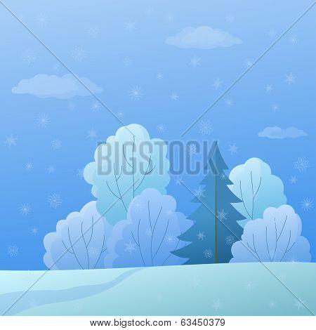 Landscape, winter forest