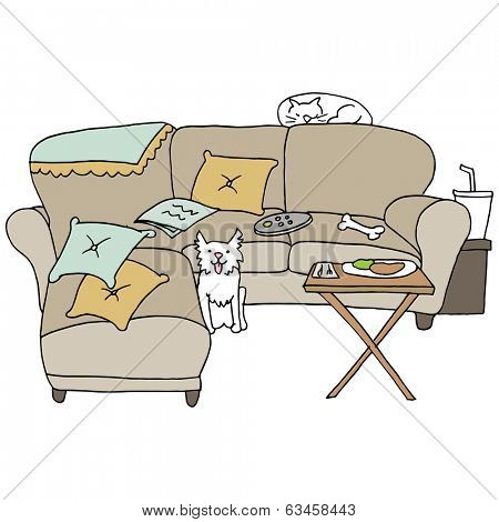 An image of living room pets.