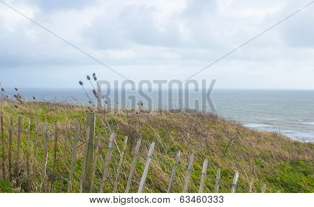 Landscape Format Rugged Coastal View