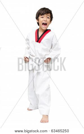 Little Tae Kwon Do Boy Doing Martial Art