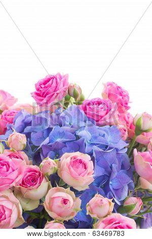 posy of pink roses and blue hortensia flowers close up