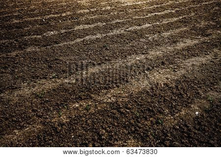 Abstract perspective view to dark wide wet soil ways, trails, dry rows outdoor Natural brown dirty texture of organic and plowed rural land in country farm, prolific rough surface for outside planting