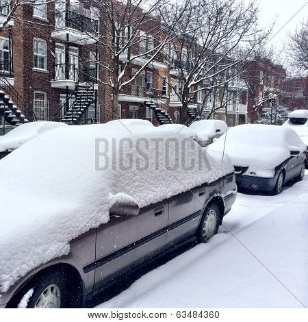 Cars Covered By Snow After The Snowstorm