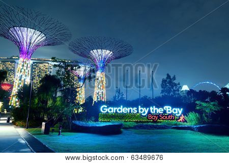 SINGAPORE - JAN 01, 2014: Gardens by the Bay or SuperTree Grove in Singapore. Night view of famous tourist travel destination
