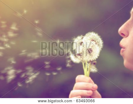 a girl blowing on a dandelion done with a vintage retro instagram filter