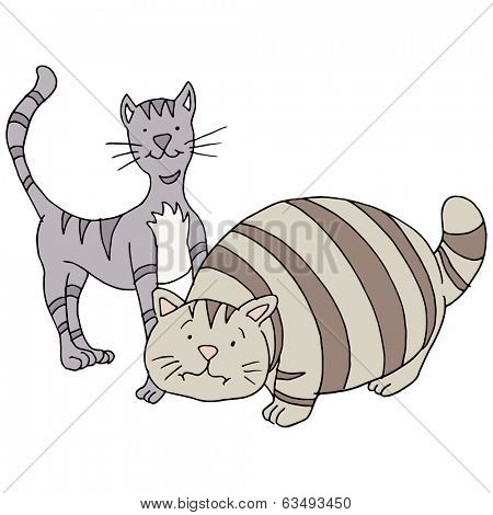 An image of a fat and skinny cat.
