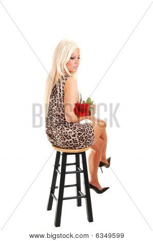 Pretty Girl In Panther Dress Sitting.
