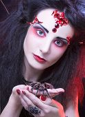 foto of black widow spider  - Black widow - JPG