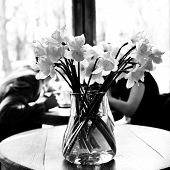 pic of lent  - Table in the cafe with lent lily and loving couple at background - JPG