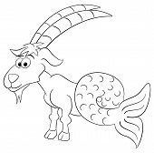 picture of capricorn  - vector illustration of a zodiac sign  - JPG