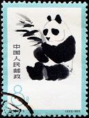 CHINA, CIRCA 1963: Postage stamp of a panda, China circa 1963, circa 1963